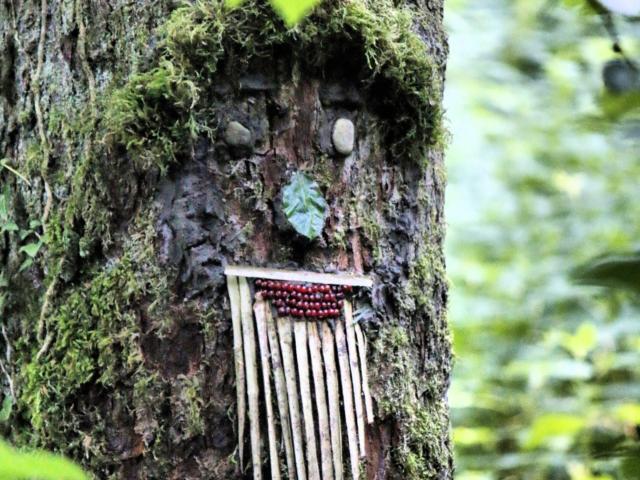 Land Art tronc d'arbre