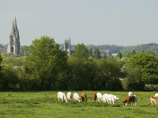 Vue de Soissons